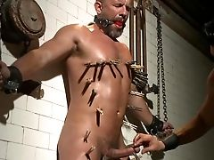 Sadism & Masochism Delights For Hot Dirk Caber