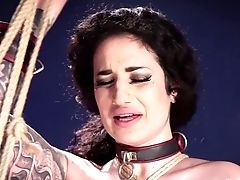 Deep Assfuck Fuck Is What Fairly Bodacious Tied Up Whore Arabelle Raphael Needs