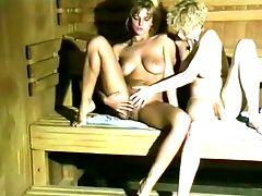 Die Sexfidele Bayernsauna (1990, German, Astrid Pils, Dvd)